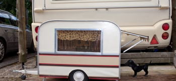 Travelling-With-Your-Dog-In-A-Caravan-Or-Motorhome-min.jpg